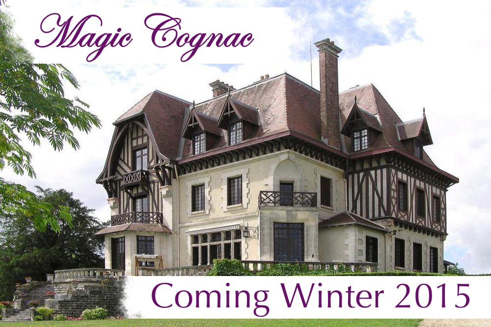 Magic Villa Cognac in France Rental Property